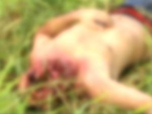 Corpo de Wilson Lopes, 42, foi encontrado desfigurado pela Policia Militar. (foto: Reprodução / TV Sul)