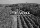 Saiba como fica o preço do café para o consumidor e para o produtor no Café em Foco
