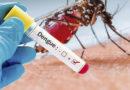 Dengue em Guaxupé: somente no mês de maio 71 casos foram confirmados