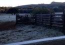 Guaxupé registra temperatura mais fria do ano nesta quarta-feira