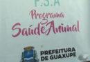 Programa Saúde Animal oferece castração de animais em Guaxupé