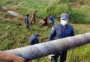 Égua atolada é resgatada pelo Corpo de Bombeiros no Jardim América