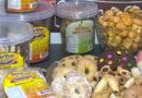 Empresas de bolachas comemoram a chegada do inverno a nova estação aquece as vendas