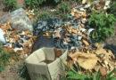 Descarte de resíduos em nascente de córrego é flagrado no parque do lago em Guaxupé