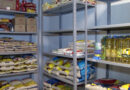Cruz Vermelha na pandemia 4 milhões de brasileiros beneficiados pelas doações