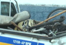 Policia Militar de Guaranésia realiza apreensão de objetor furtados e grande quantidade de drogas