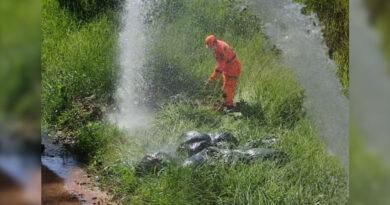 Bombeiros flagram crime ambiental no jardim orminda em Guaxupé