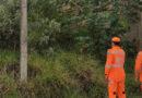 Corpo de Bombeiros realiza operação Alerta Verde
