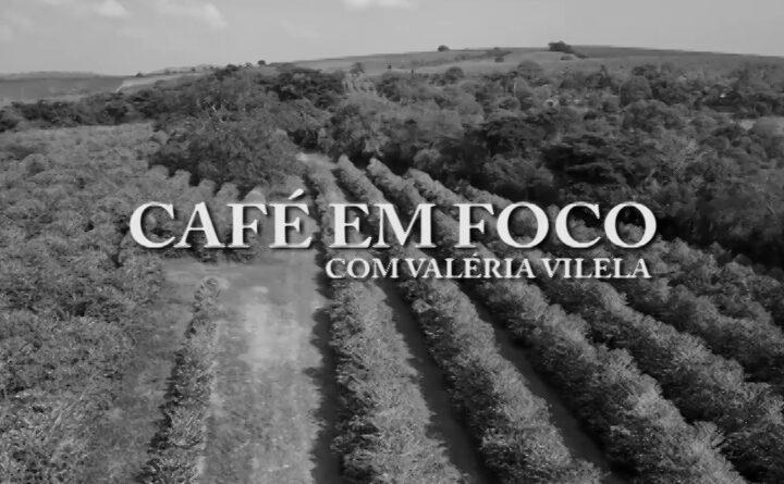 Café em Foco: cafeicultores iniciam a colheita na região